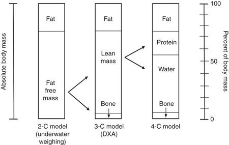 Mallinson et al., 2011