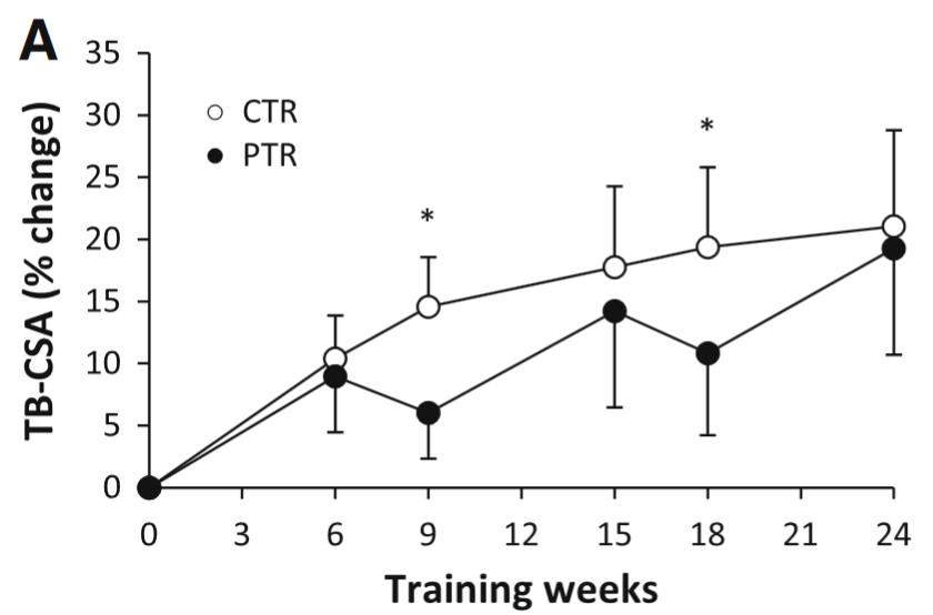 Ogasawara et al., 2013 - CSA