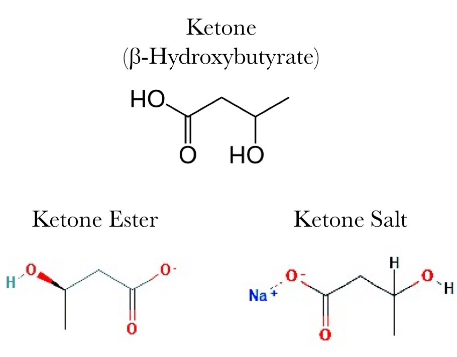 Exogenous ketones esters and salts